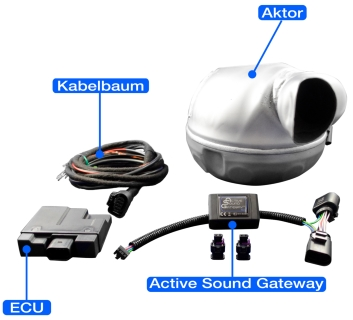 Overview of all parts in an Active Sound complete set for retrofitting